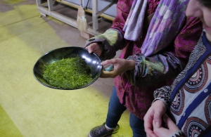 Tea straight from the drying machine, ready to taste